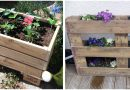 Build your own planter with a wooden pallet